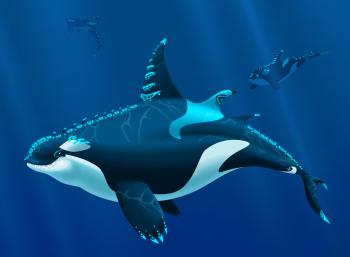 Orca Tats